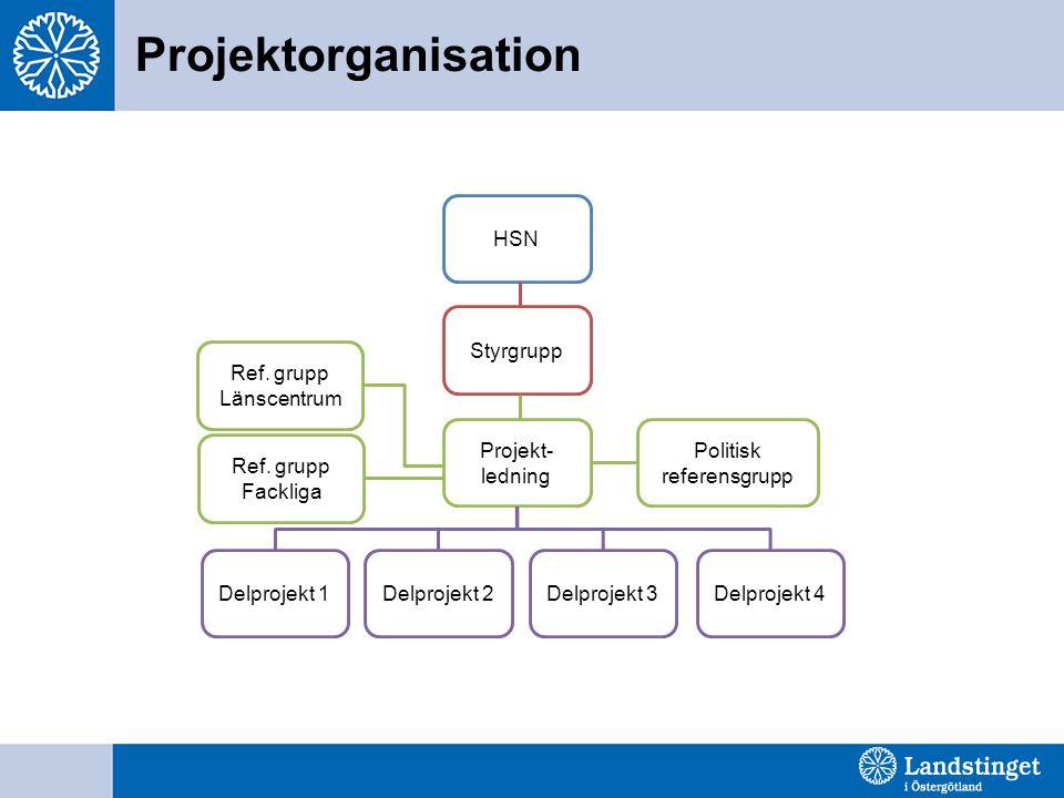 Projektorganisation HSN Styrgrupp Projekt- ledning Ref. grupp Fackliga Politisk referensgrupp Ref. grupp Länscentrum Delprojekt 1Delprojekt 2Delprojek