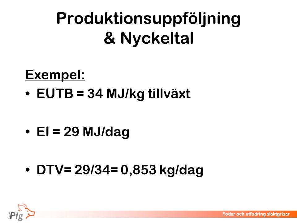 Föreläsningsrubrik / temaFoder och utfodring slaktgrisar Exempel: EUTB = 34 MJ/kg tillväxt EI = 29 MJ/dag DTV= 29/34= 0,853 kg/dag Produktionsuppföljn