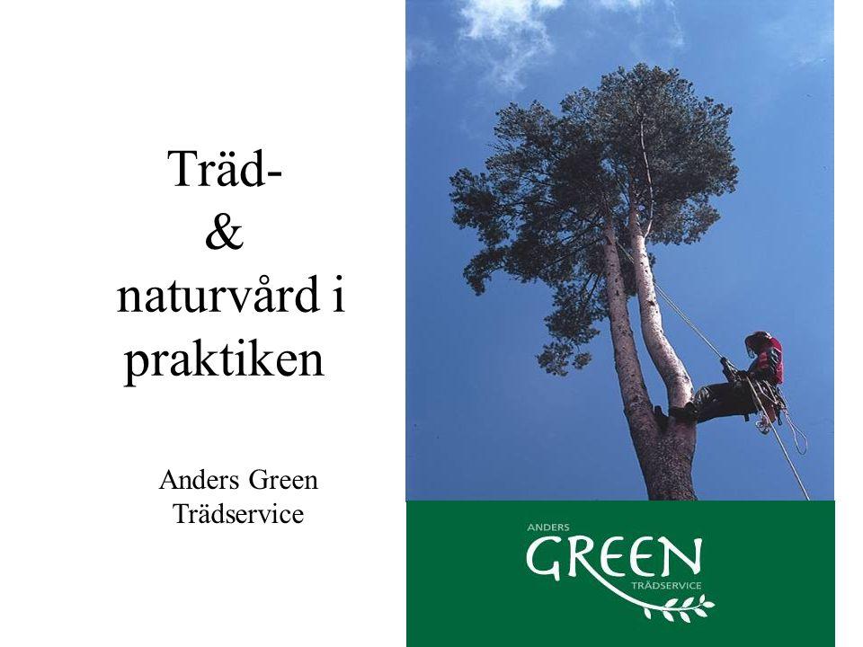 Träd- & naturvård i praktiken Anders Green Trädservice