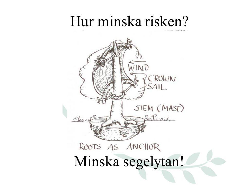 Hur minska risken Minska segelytan!