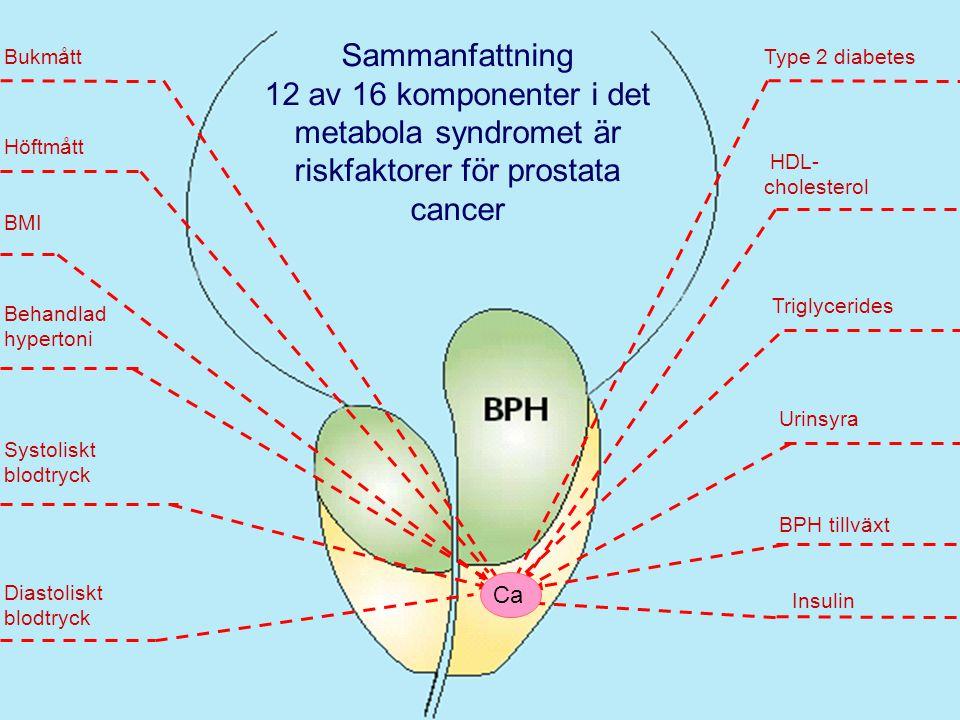 Behandlad hypertoni Type 2 diabetes HDL- cholesterol Urinsyra Insulin BMI BPH tillväxt Bukmått Höftmått Systoliskt blodtryck Sammanfattning 12 av 16 komponenter i det metabola syndromet är riskfaktorer för prostata cancer Diastoliskt blodtryck Triglycerides Ca