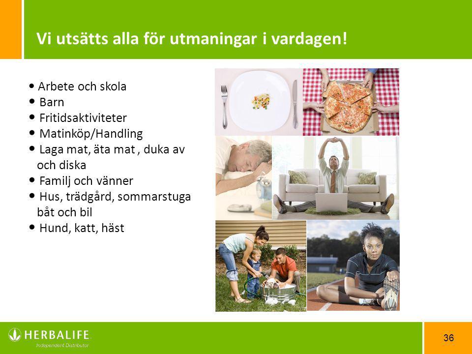 36 Arbete och skola Barn Fritidsaktiviteter Matinköp/Handling Laga mat, äta mat, duka av och diska Familj och vänner Hus, trädgård, sommarstuga båt oc