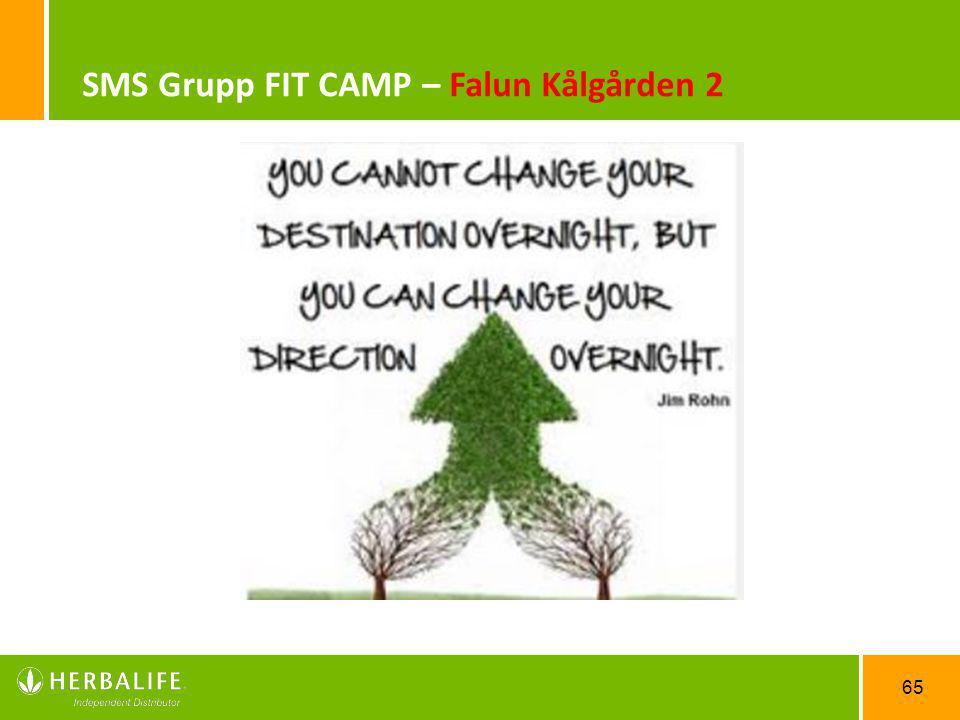 65 SMS Grupp FIT CAMP – Falun Kålgården 2