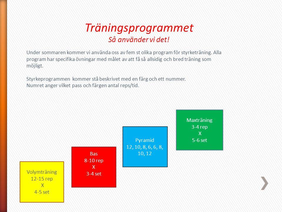 Volymträning 12-15 rep X 4-5 set Maxträning 3-4 rep X 5-6 set Pyramid 12, 10, 8, 6, 6, 8, 10, 12 Bas 8-10 rep X 3-4 set Träningsprogrammet Så använder
