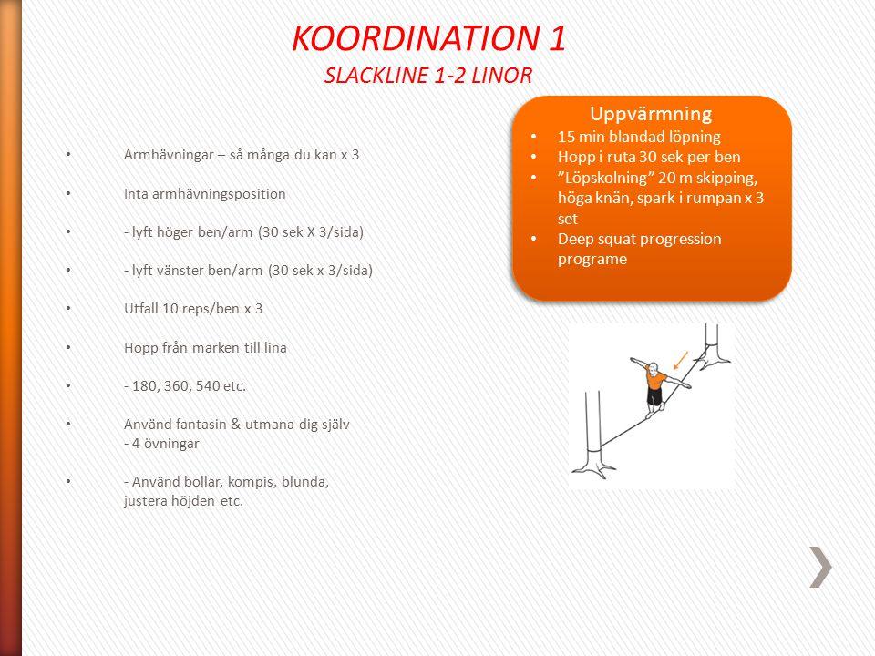 KOORDINATION 1 SLACKLINE 1-2 LINOR Armhävningar – så många du kan x 3 Inta armhävningsposition - lyft höger ben/arm (30 sek X 3/sida) - lyft vänster b