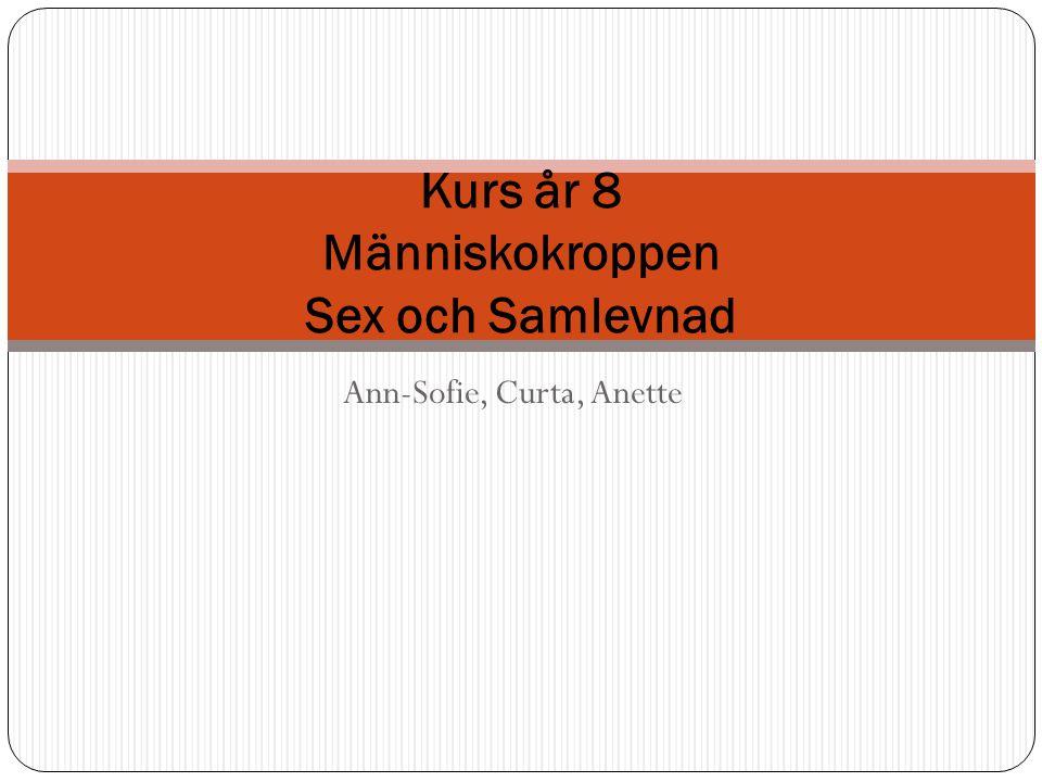 Ann-Sofie, Curta, Anette Kurs år 8 Människokroppen Sex och Samlevnad