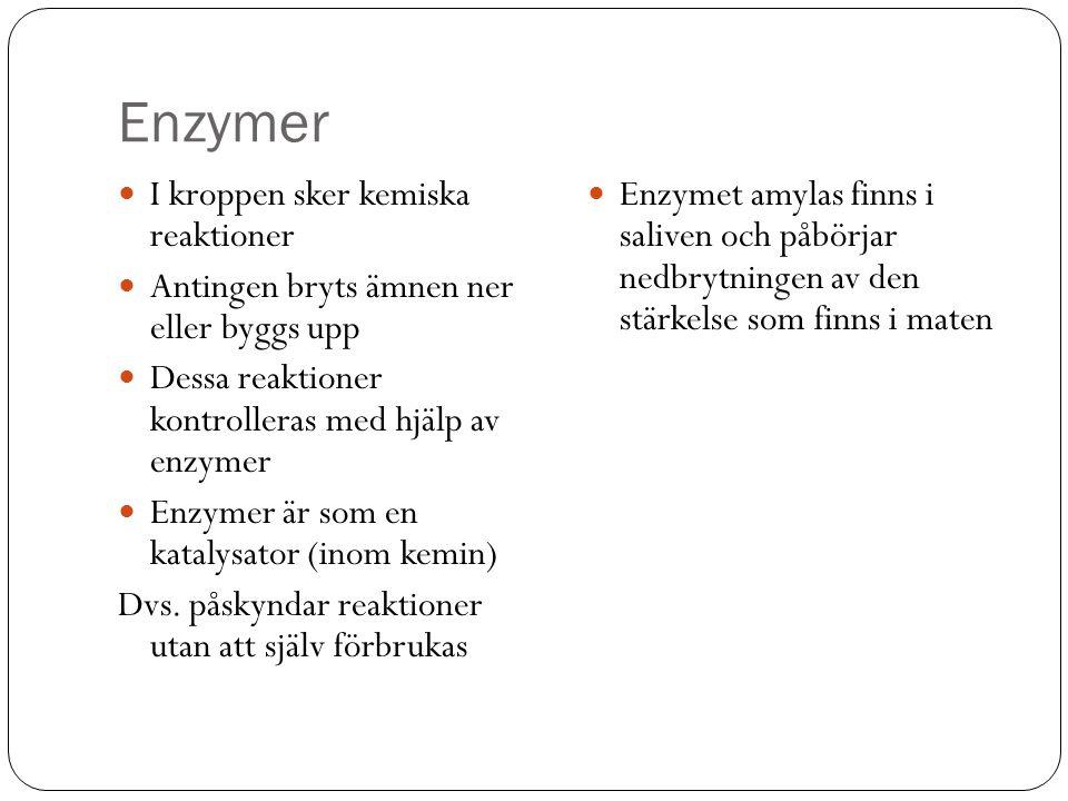 Enzymer I kroppen sker kemiska reaktioner Antingen bryts ämnen ner eller byggs upp Dessa reaktioner kontrolleras med hjälp av enzymer Enzymer är som e