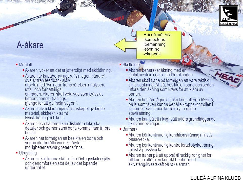 LULEÅ ALPINA KLUBB Junior/senior  Mentalt  Åkaren tycker att det är jätteroligt med skidåkning.