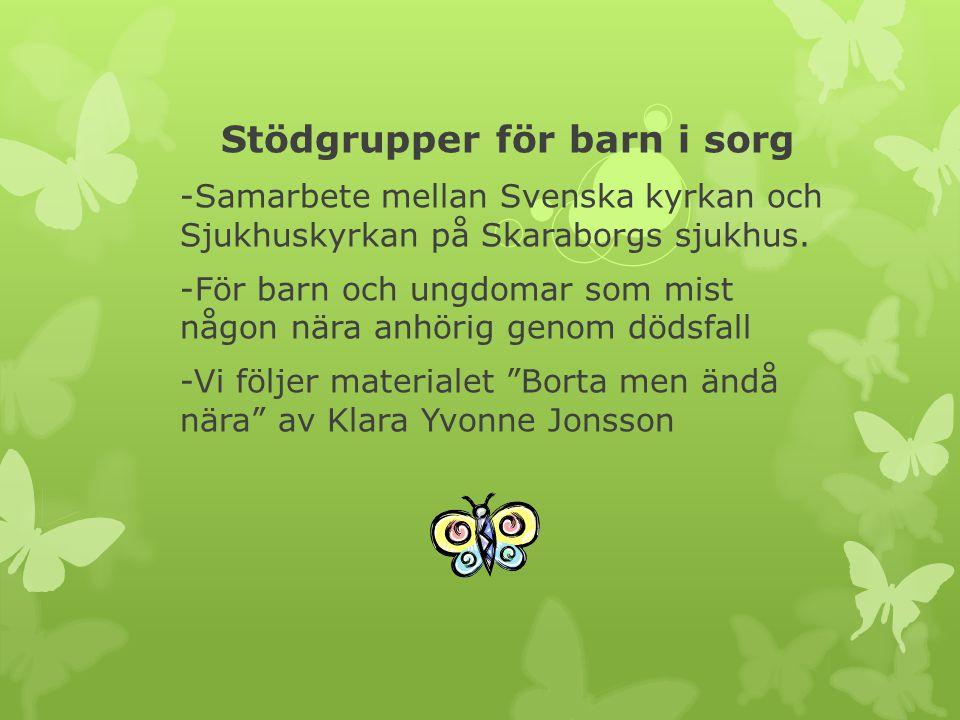 Stödgrupper för barn i sorg -Samarbete mellan Svenska kyrkan och Sjukhuskyrkan på Skaraborgs sjukhus.