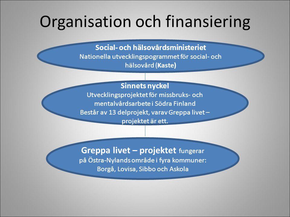 Organisation och finansiering Social- och hälsovårdsministeriet Nationella utvecklingspogrammet för social- och hälsovård (Kaste) Sinnets nyckel Utvecklingsprojektet för missbruks- och mentalvårdsarbete i Södra Finland Består av 13 delprojekt, varav Greppa livet – projektet är ett.