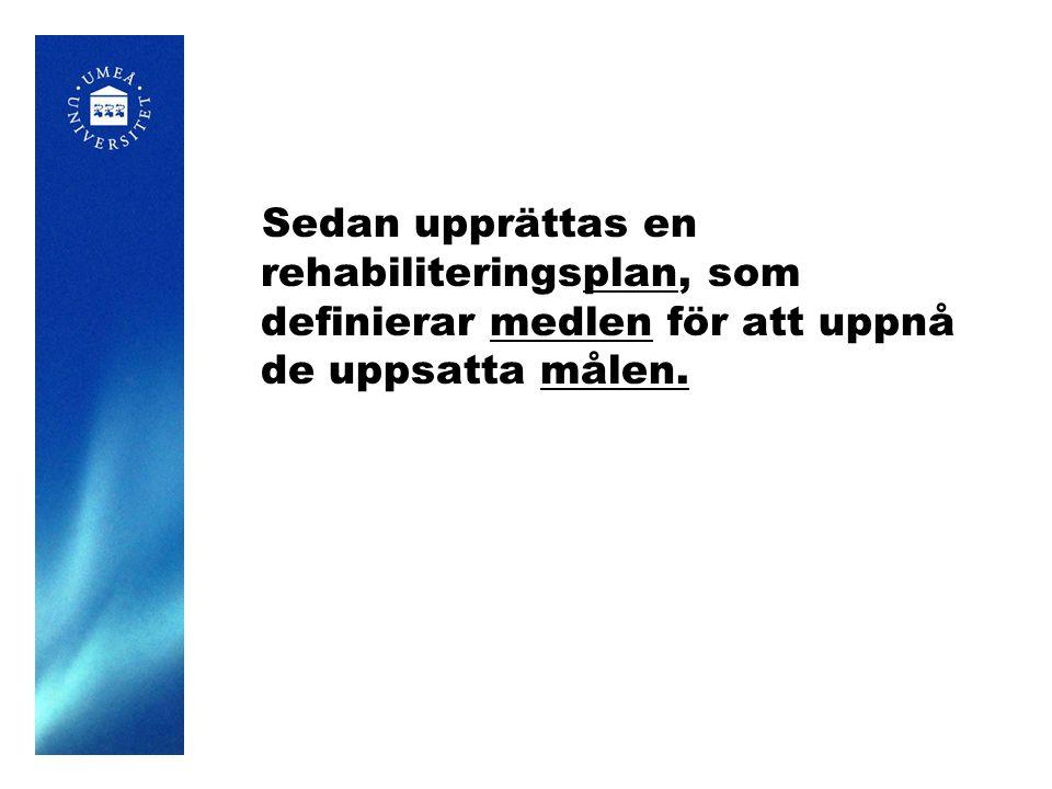 Sedan upprättas en rehabiliteringsplan, som definierar medlen för att uppnå de uppsatta målen.