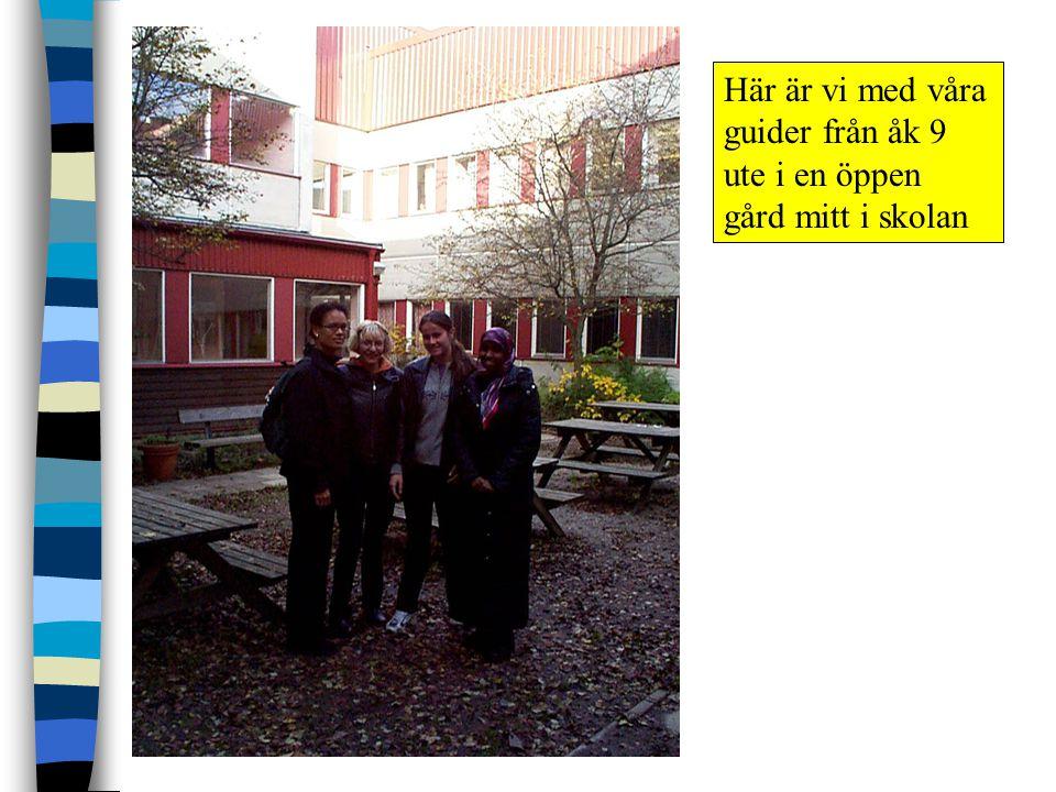 Här är vi med våra guider från åk 9 ute i en öppen gård mitt i skolan