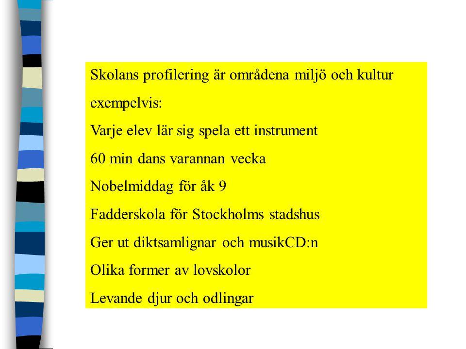 Skolans profilering är områdena miljö och kultur exempelvis: Varje elev lär sig spela ett instrument 60 min dans varannan vecka Nobelmiddag för åk 9 Fadderskola för Stockholms stadshus Ger ut diktsamlignar och musikCD:n Olika former av lovskolor Levande djur och odlingar