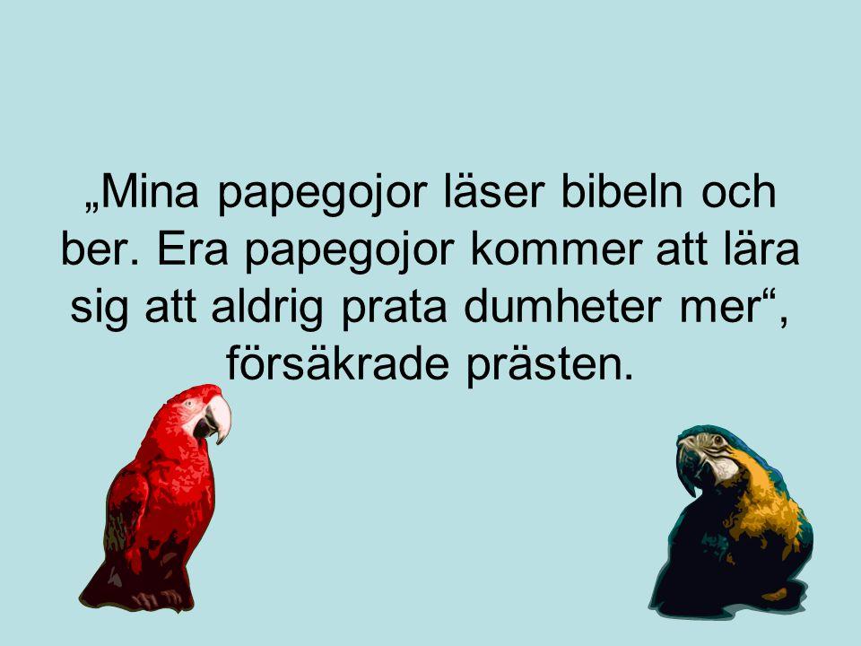 """""""Mina papegojor läser bibeln och ber. Era papegojor kommer att lära sig att aldrig prata dumheter mer"""", försäkrade prästen."""