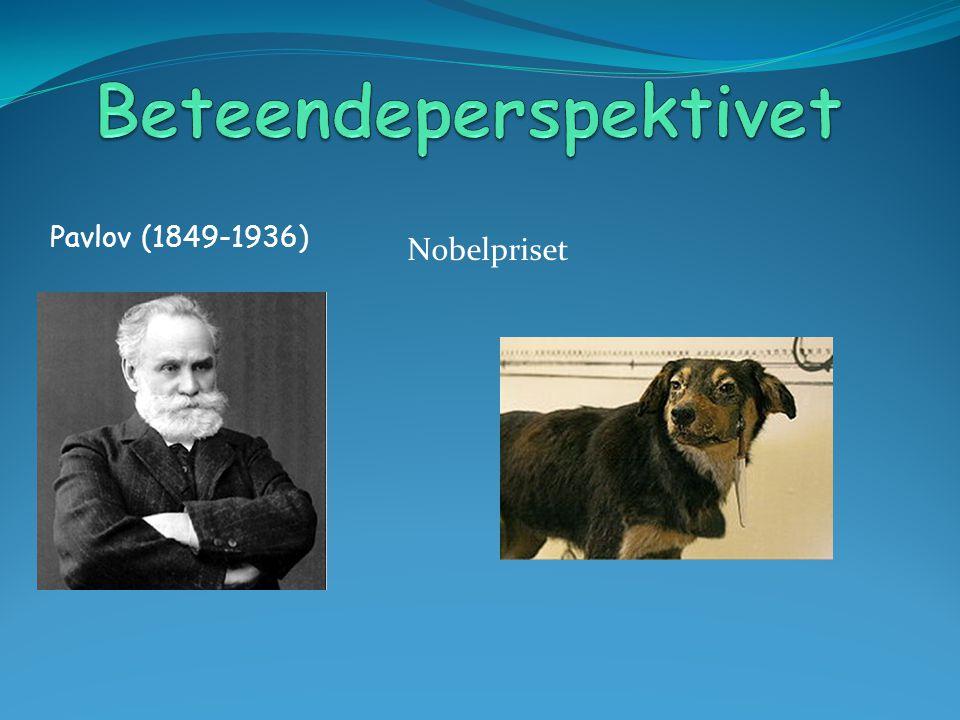 Pavlov (1849-1936) Nobelpriset