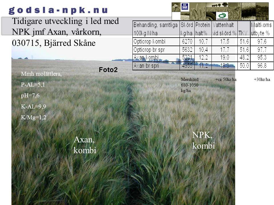 Tidigare utveckling i led med NPK jmf Axan, vårkorn, 030715, Bjärred Skåne Foto2 Mmh molättlera, P-AL=5,1 pH=7,6 K-AL=9,9 K/Mg=1,2 NPK, kombi Axan, ko