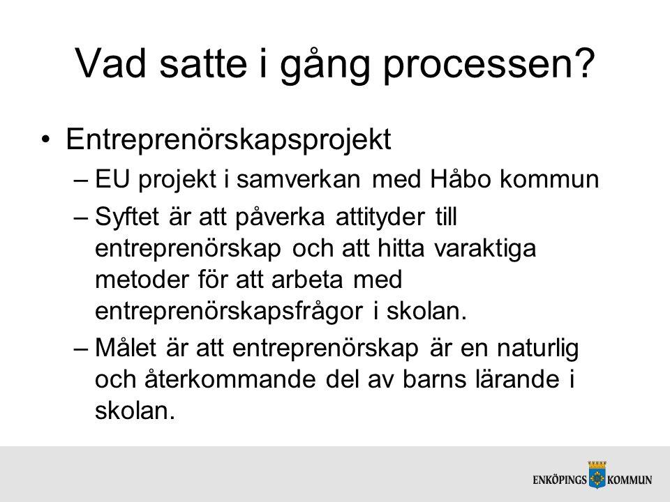Vad satte i gång processen? Entreprenörskapsprojekt –EU projekt i samverkan med Håbo kommun –Syftet är att påverka attityder till entreprenörskap och