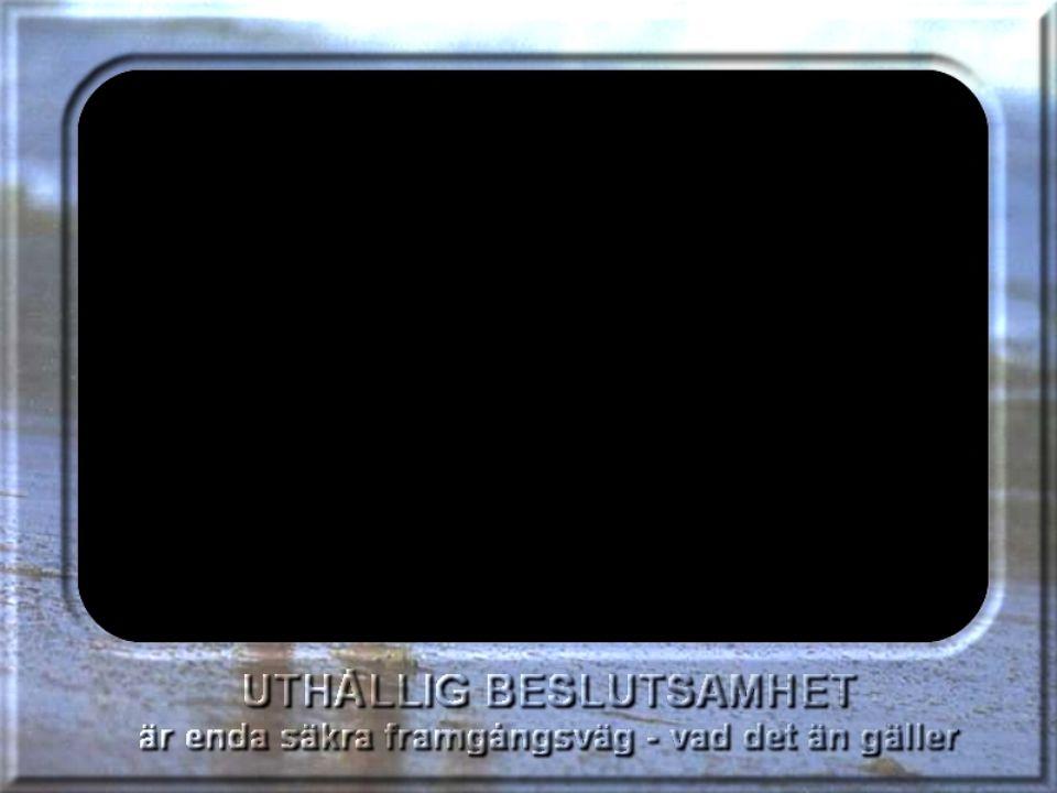 4. Rätta fel och brister hos aktuell delanalys 3.