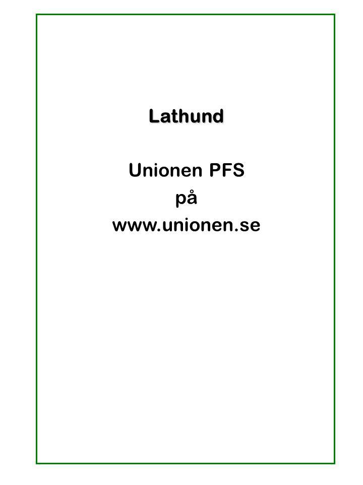 Lathund Unionen PFS på www.unionen.se