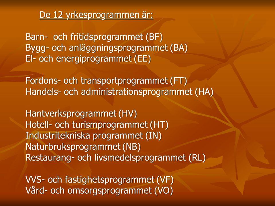 De 12 yrkesprogrammen är: Barn- och fritidsprogrammet (BF) Bygg- och anläggningsprogrammet (BA) El- och energiprogrammet (EE) Fordons- och transportprogrammet (FT) Handels- och administrationsprogrammet (HA) Hantverksprogrammet (HV) Hotell- och turismprogrammet (HT) Industritekniska programmet (IN) Naturbruksprogrammet (NB) Restaurang- och livsmedelsprogrammet (RL) VVS- och fastighetsprogrammet (VF) Vård- och omsorgsprogrammet (VO)