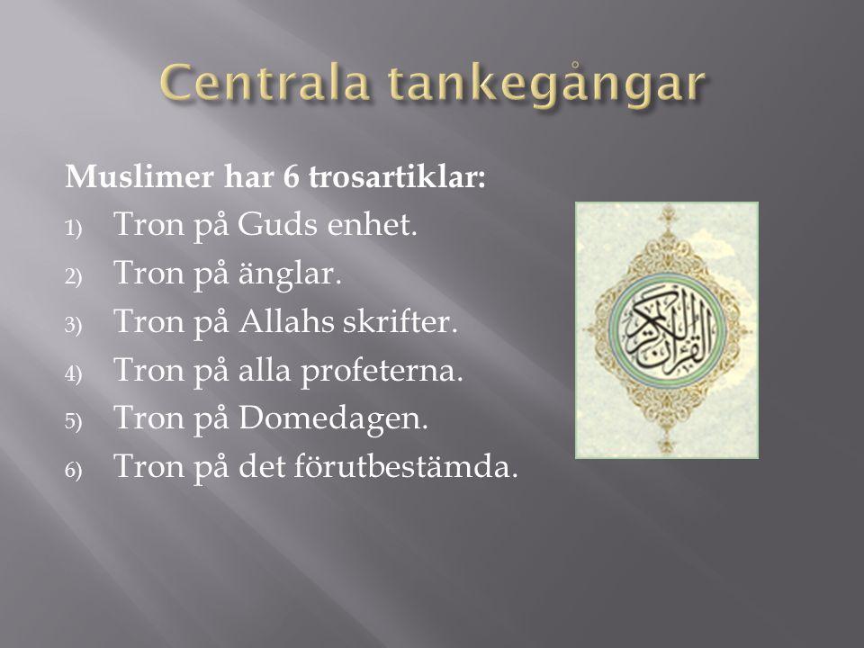 Muslimer har 6 trosartiklar: 1) Tron på Guds enhet. 2) Tron på änglar. 3) Tron på Allahs skrifter. 4) Tron på alla profeterna. 5) Tron på Domedagen. 6