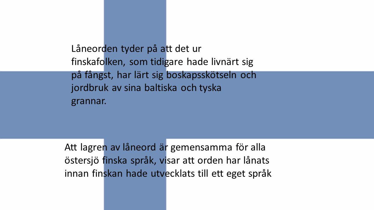 Att lagren av låneord är gemensamma för alla östersjö finska språk, visar att orden har lånats innan finskan hade utvecklats till ett eget språk Låneo