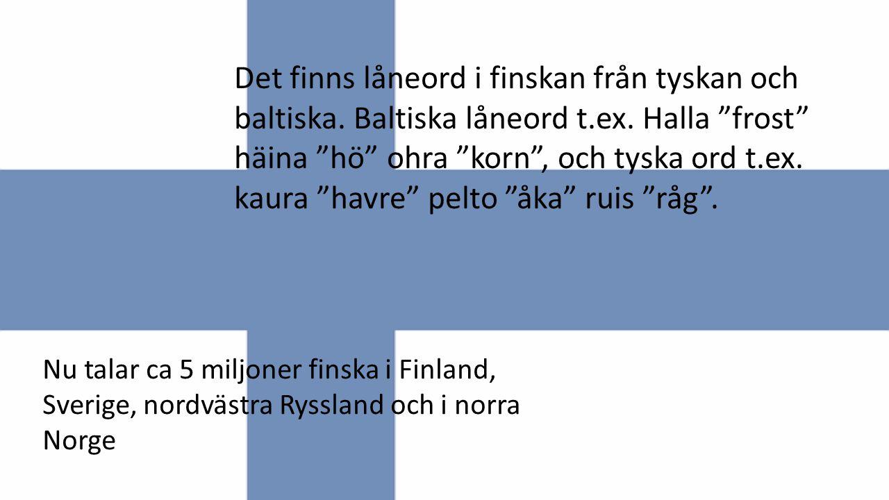 """Det finns låneord i finskan från tyskan och baltiska. Baltiska låneord t.ex. Halla """"frost"""" häina """"hö"""" ohra """"korn"""", och tyska ord t.ex. kaura """"havre"""" p"""