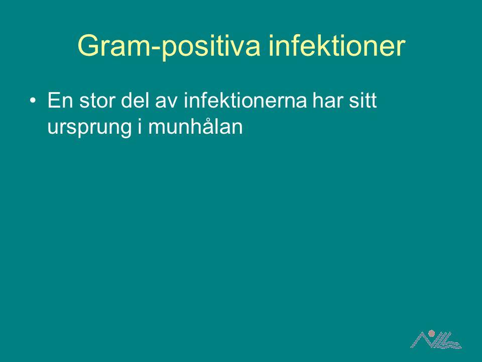 Gram-positiva infektioner En stor del av infektionerna har sitt ursprung i munhålan