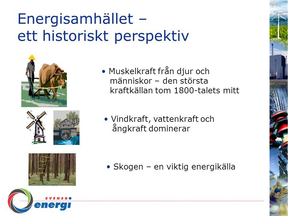 Energisamhället – ett historiskt perspektiv Muskelkraft från djur och människor – den största kraftkällan tom 1800-talets mitt Vindkraft, vattenkraft och ångkraft dominerar Skogen – en viktig energikälla