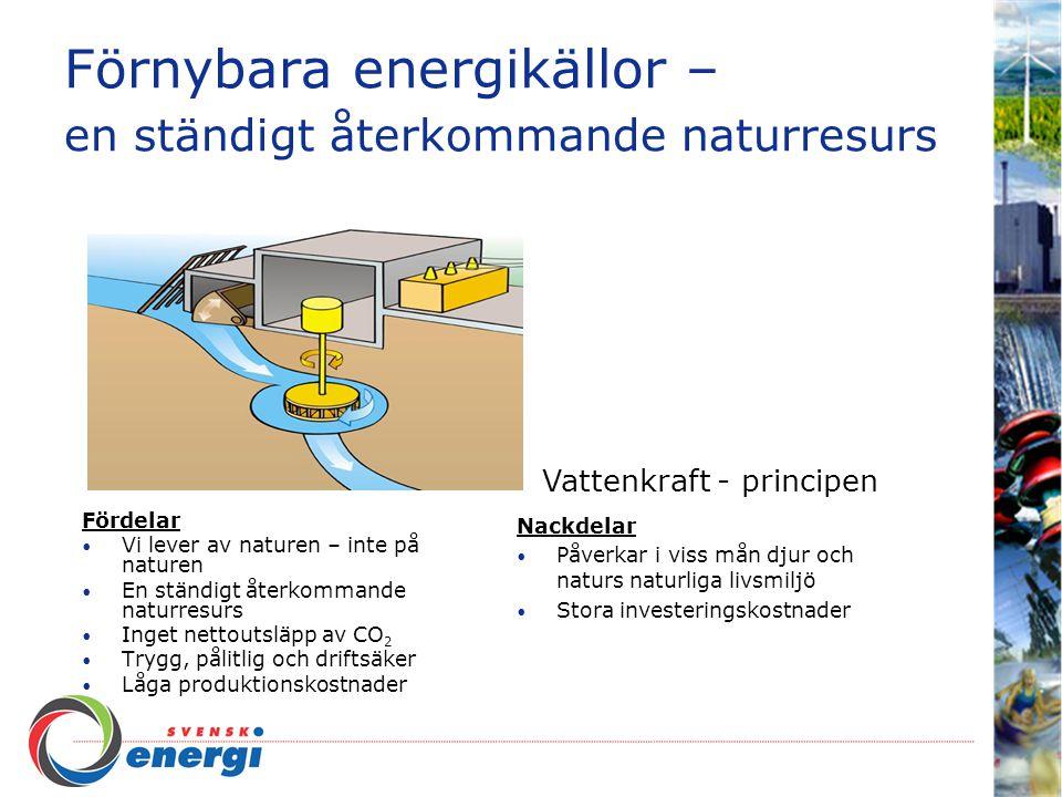 Förnybara energikällor – en ständigt återkommande naturresurs Fördelar Vi lever av naturen – inte på naturen En ständigt återkommande naturresurs Inget nettoutsläpp av CO 2 Bevarar jordens naturliga kretsförlopp Nackdelar Tillskott snarare än primärkälla Beroende av solinstrålningen Svårplacerade Höga kostnader Solfångare