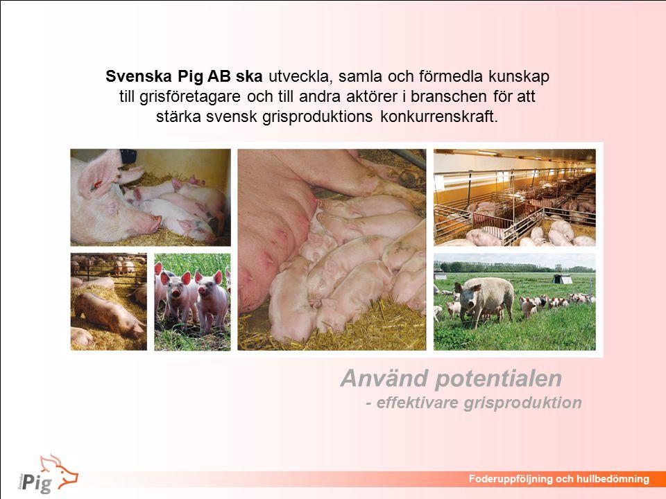 Föreläsningsrubrik / temaFoderuppföljning och hullbedömning Använd potentialen - effektivare grisproduktion Svenska Pig AB ska utveckla, samla och förmedla kunskap till grisföretagare och till andra aktörer i branschen för att stärka svensk grisproduktions konkurrenskraft.