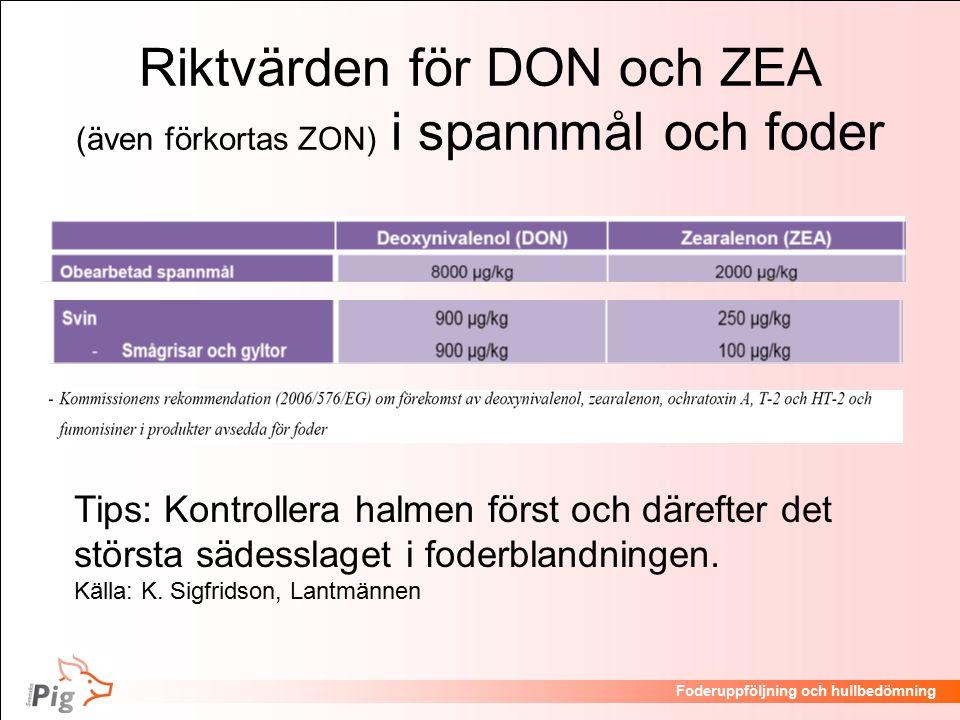 Föreläsningsrubrik / temaFoderuppföljning och hullbedömning Riktvärden för DON och ZEA (även förkortas ZON) i spannmål och foder Tips: Kontrollera halmen först och därefter det största sädesslaget i foderblandningen.