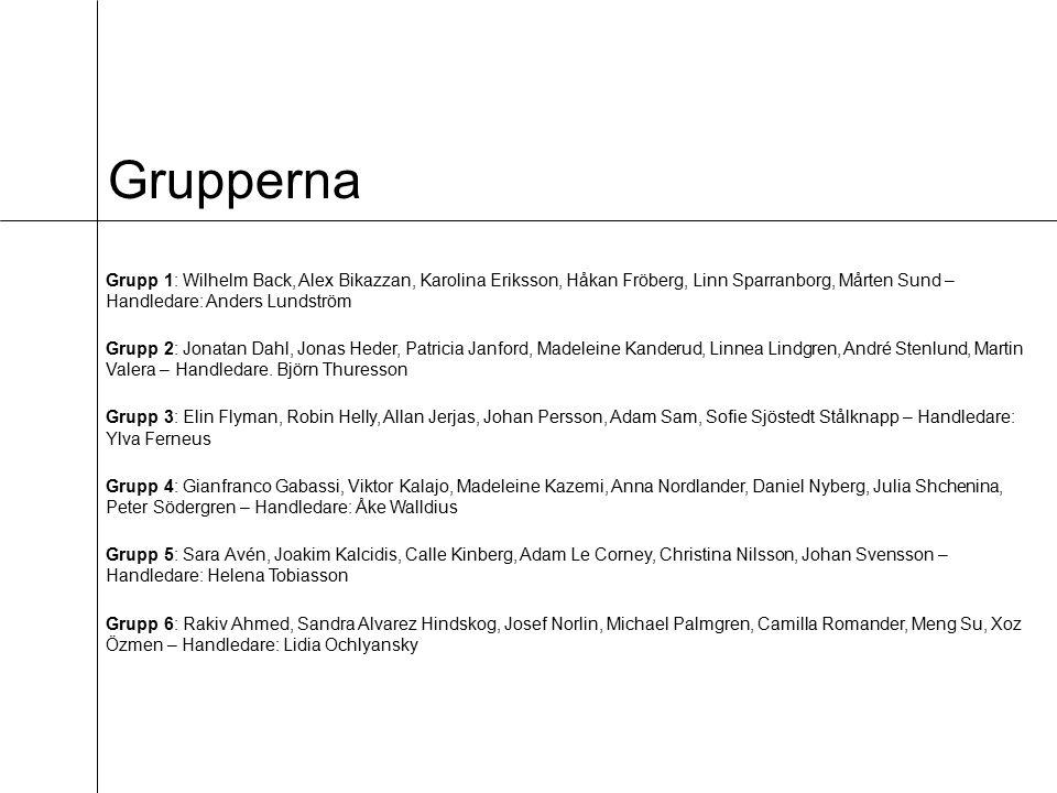 Grupperna Grupp 1: Wilhelm Back, Alex Bikazzan, Karolina Eriksson, Håkan Fröberg, Linn Sparranborg, Mårten Sund – Handledare: Anders Lundström Grupp 2