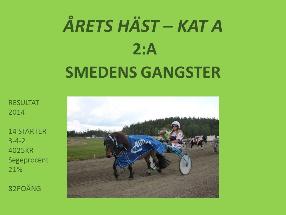 ÅRETS HÄST – KAT A 2:A SMEDENS GANGSTER RESULTAT 2014 14 STARTER 3-4-2 4025KR Segeprocent 21% 82POÄNG