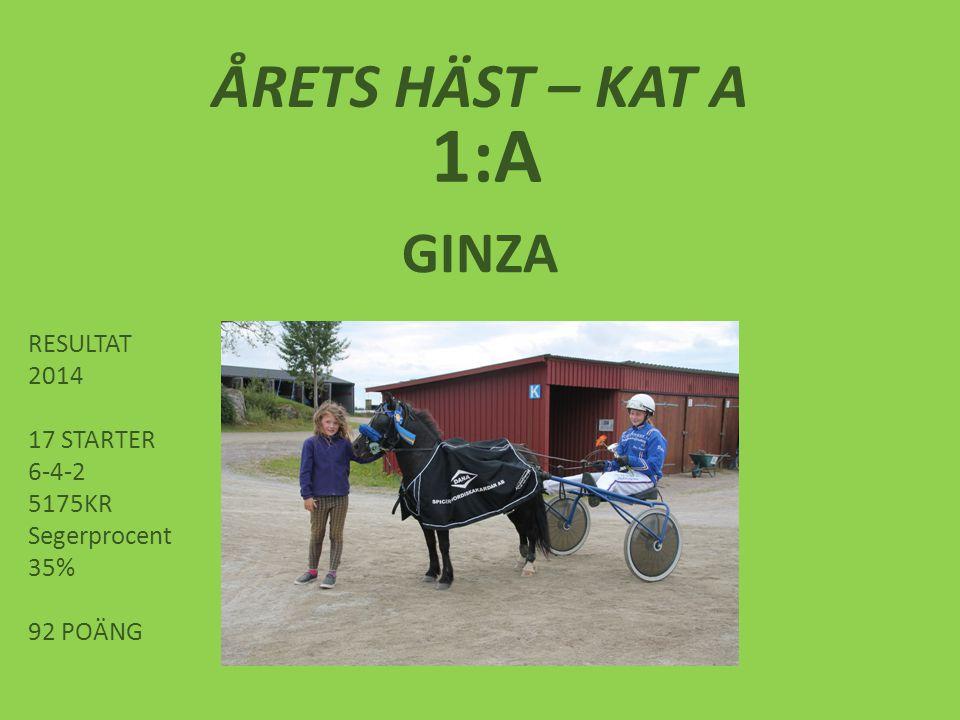 ÅRETS HÄST – KAT A 1:A GINZA RESULTAT 2014 17 STARTER 6-4-2 5175KR Segerprocent 35% 92 POÄNG