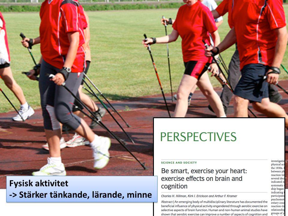 Fysisk aktivitet -> Stärker tänkande, lärande, minne Fysisk aktivitet -> Stärker tänkande, lärande, minne