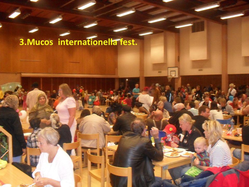 Aktiviteter 1.Muco danskurs för alla unga som vuxna 2. Muco folkdans från olika länder