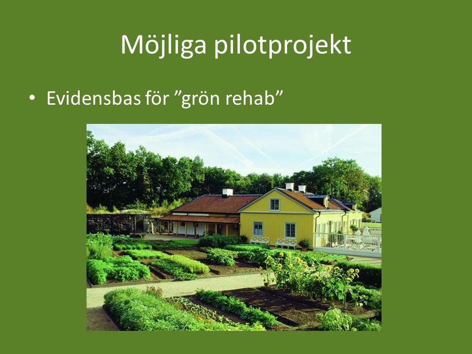 Möjliga pilotprojekt Evidensbas för grön rehab