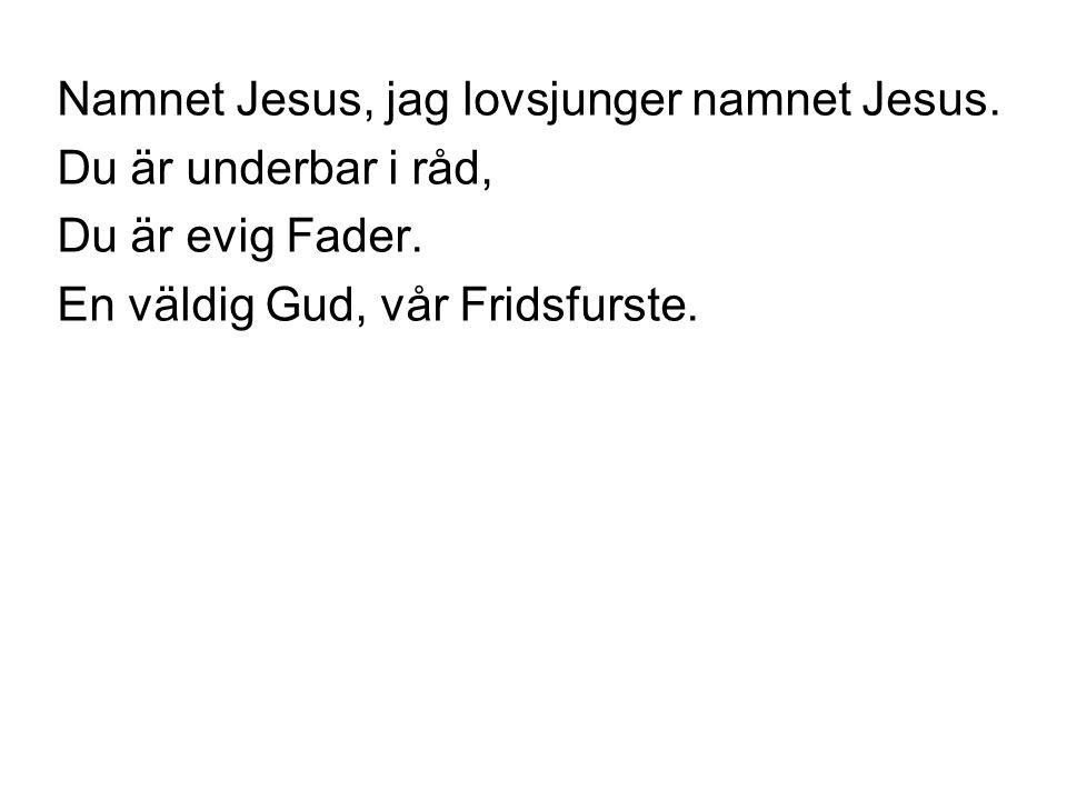 Namnet Jesus, jag lovsjunger namnet Jesus. Du är underbar i råd, Du är evig Fader. En väldig Gud, vår Fridsfurste.