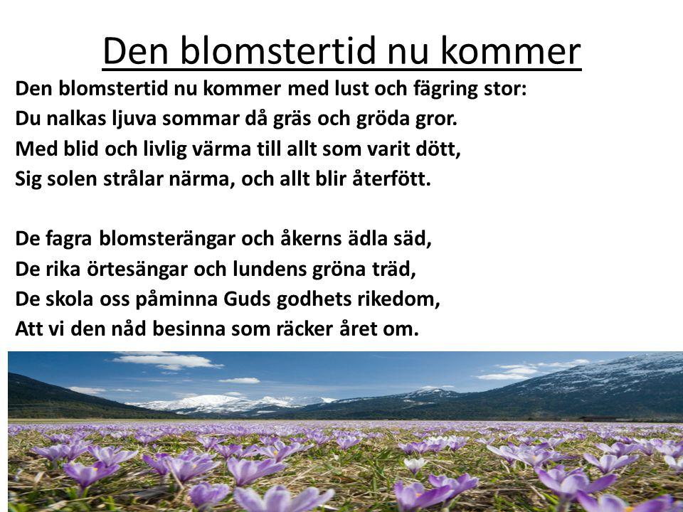 Den blomstertid nu kommer Den blomstertid nu kommer med lust och fägring stor: Du nalkas ljuva sommar då gräs och gröda gror. Med blid och livlig värm