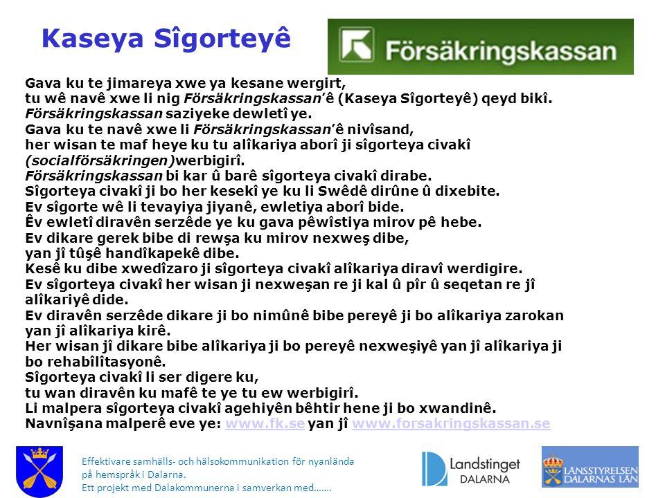 Effektivare samhälls- och hälsokommunikation för nyanlända på hemspråk i Dalarna. Ett projekt med Dalakommunerna i samverkan med……. Gava ku te jimarey