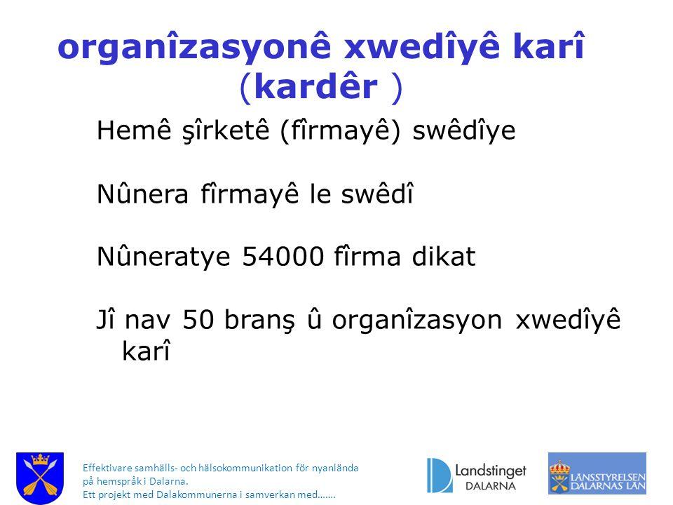 Effektivare samhälls- och hälsokommunikation för nyanlända på hemspråk i Dalarna. Ett projekt med Dalakommunerna i samverkan med……. organîzasyonê xwed