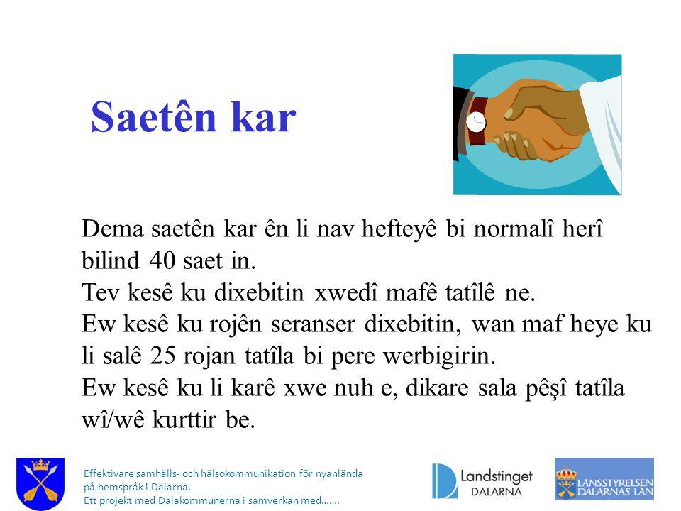 Effektivare samhälls- och hälsokommunikation för nyanlända på hemspråk i Dalarna. Ett projekt med Dalakommunerna i samverkan med……. Saetên kar Dema sa