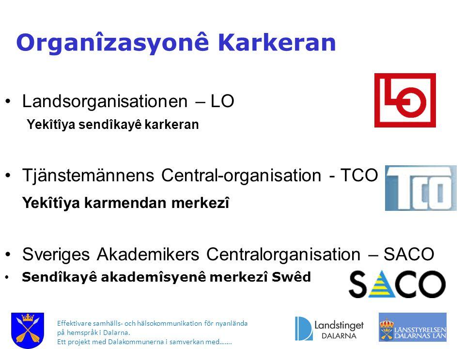 Effektivare samhälls- och hälsokommunikation för nyanlända på hemspråk i Dalarna. Ett projekt med Dalakommunerna i samverkan med……. Landsorganisatione