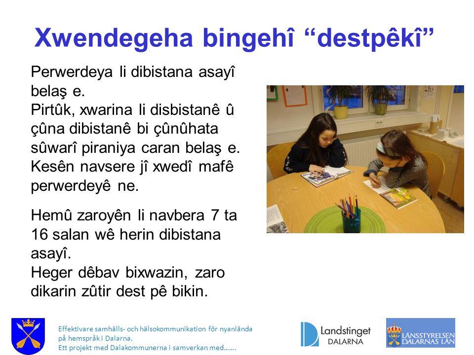 Effektivare samhälls- och hälsokommunikation för nyanlända på hemspråk i Dalarna. Ett projekt med Dalakommunerna i samverkan med……. Xwendegeha bingehî