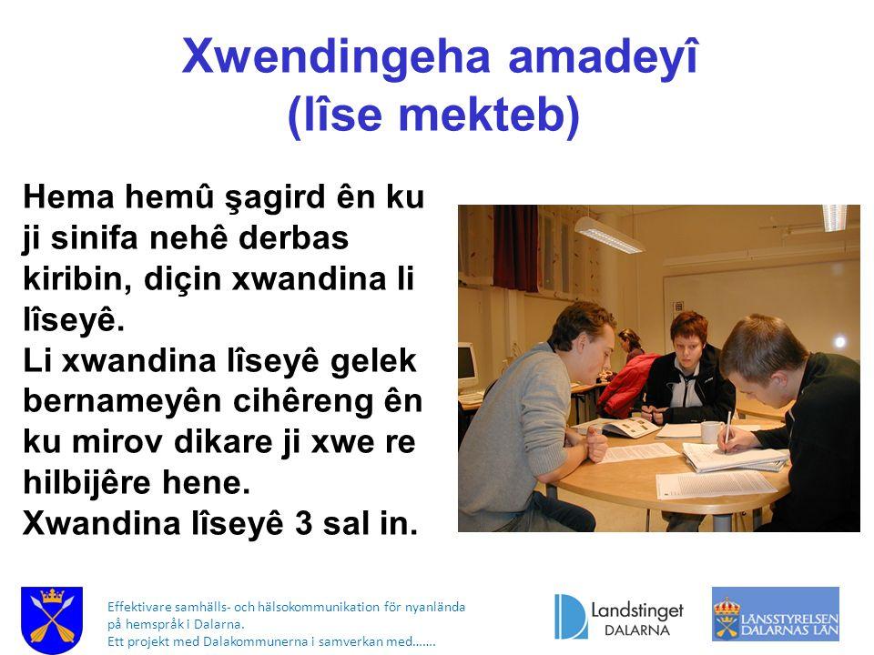 Effektivare samhälls- och hälsokommunikation för nyanlända på hemspråk i Dalarna. Ett projekt med Dalakommunerna i samverkan med……. Xwendingeha amadey