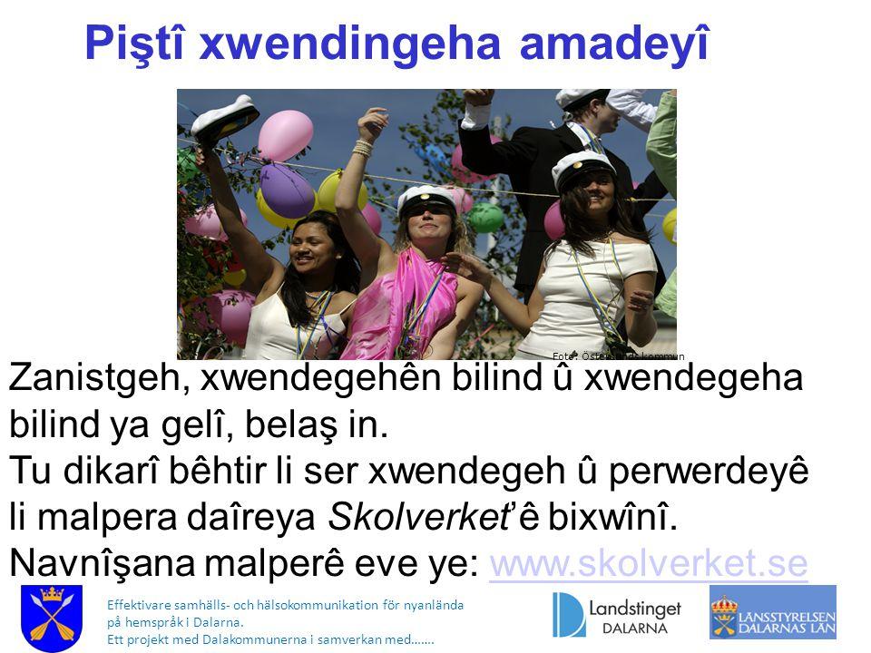 Effektivare samhälls- och hälsokommunikation för nyanlända på hemspråk i Dalarna. Ett projekt med Dalakommunerna i samverkan med……. Foto: Östersunds k