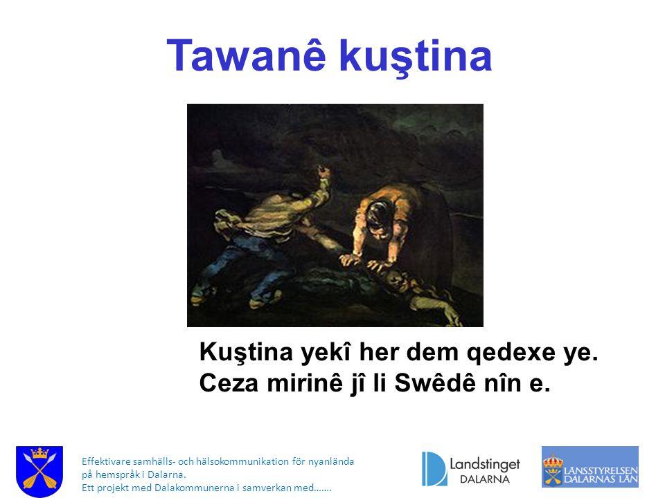 Effektivare samhälls- och hälsokommunikation för nyanlända på hemspråk i Dalarna. Ett projekt med Dalakommunerna i samverkan med……. Tawanê kuştina Kuş