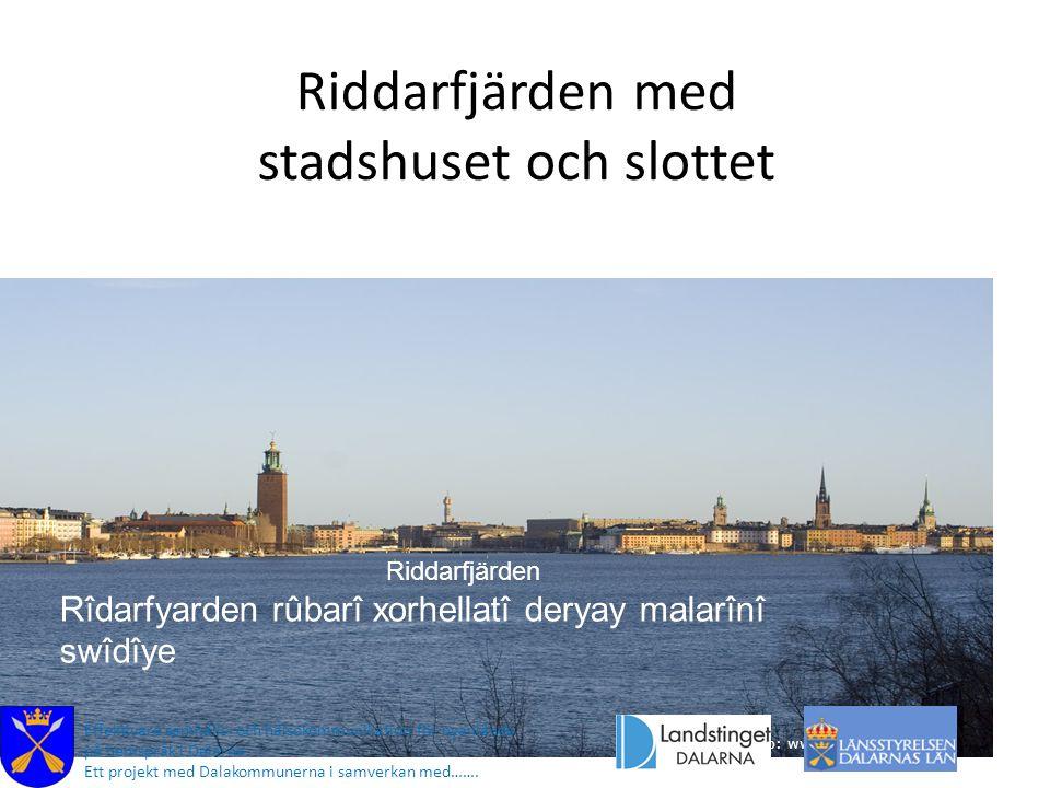 Riddarfjärden med stadshuset och slottet Foto: www.fotoakuten.se Effektivare samhälls- och hälsokommunikation för nyanlända på hemspråk i Dalarna. Ett