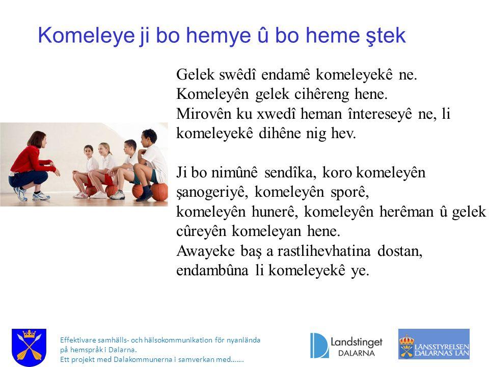 Effektivare samhälls- och hälsokommunikation för nyanlända på hemspråk i Dalarna. Ett projekt med Dalakommunerna i samverkan med……. Komeleye ji bo hem